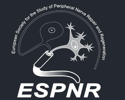 Logo European Society for the Study of Peripheral Nerve Repair and Regeneration